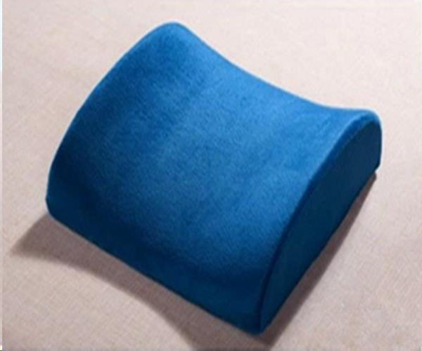 Where to find Cushion-Lumbar-Blue in Seattle